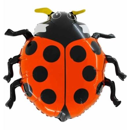 124 lady bug