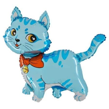 225 cat boy