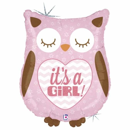35156H Its A Girl Baby Owl
