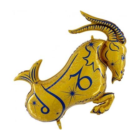 590h zodiac capricorn gold hd