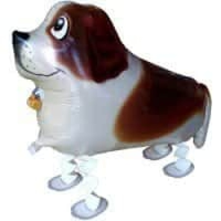 Airwalker Hund Bernhardiner