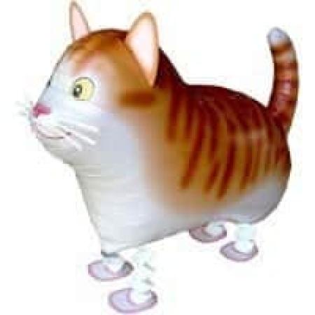 Airwalker Katze Rot