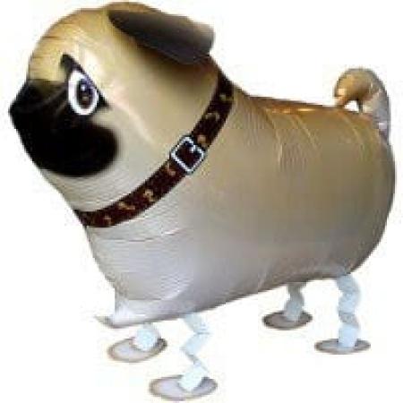 Airwalker Hund Mops