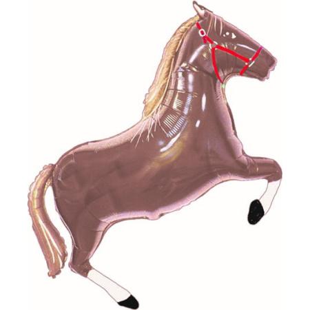 pferd dunkelbraun